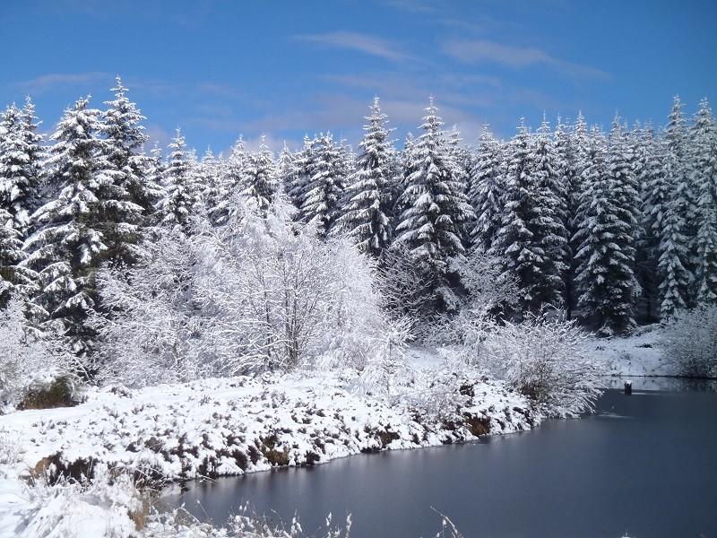 Stage Base de la survie Grand froid du 17 et 18 janvier 2015 P1172713