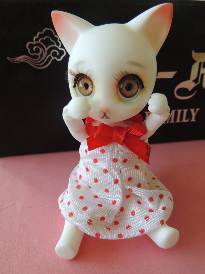 Rui de Doll family : nouvelles photos de Myla Dscn2336