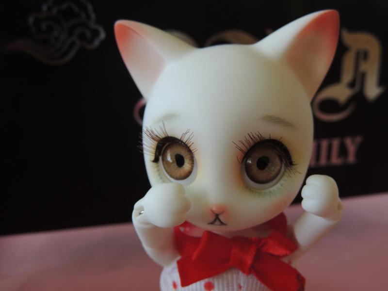 Rui de Doll family : nouvelles photos de Myla Dscn2337