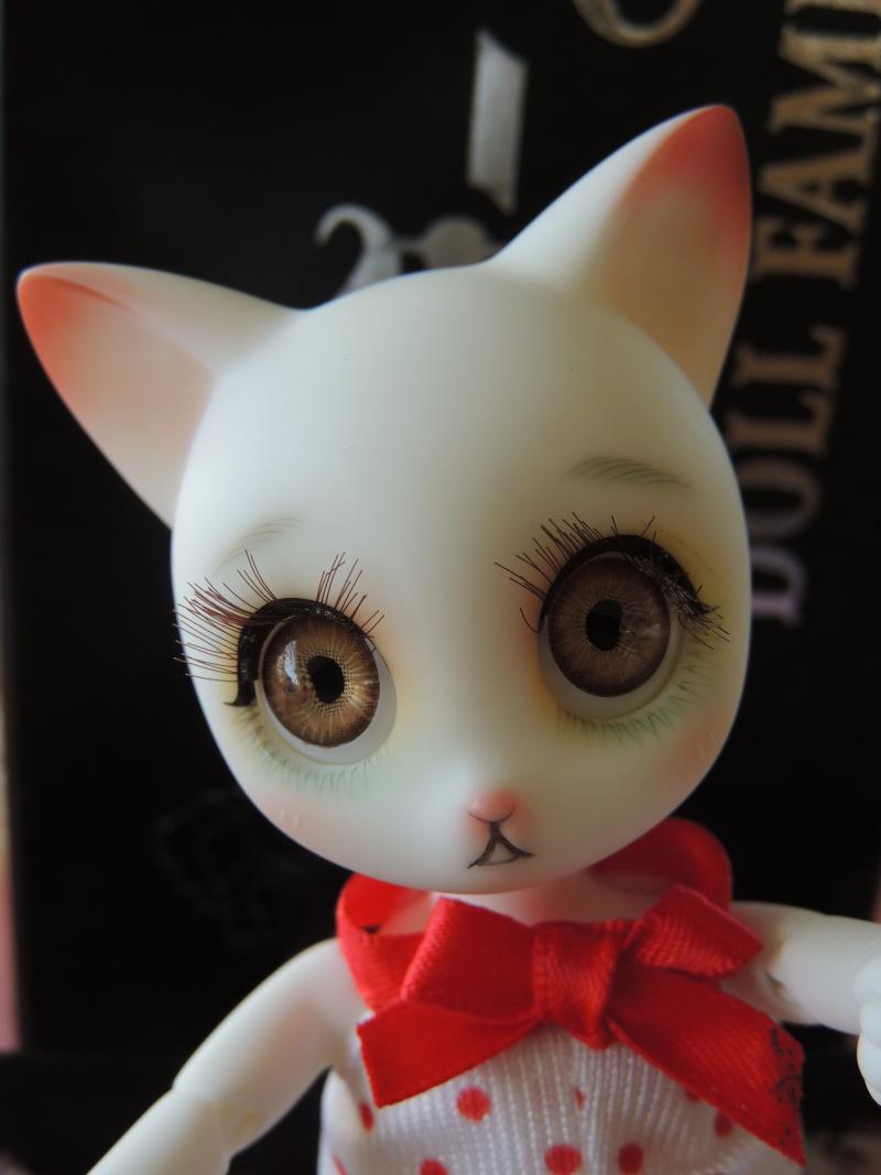 Rui de Doll family : nouvelles photos de Myla Dscn2338