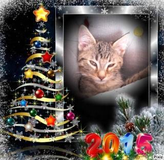bonne année ! Pixiz_14