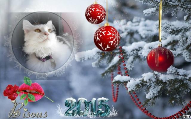 Très bonne année !!! Pixiz_15