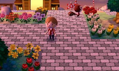 Animal Crossing New Leaf Hni_0010