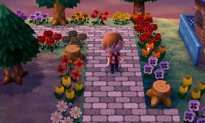 Animal Crossing New Leaf Hni_0013