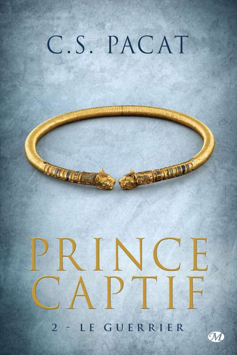 PACAT C.S. - PRINCE CAPTIF - Tome 2 : Le guerrier Prince11