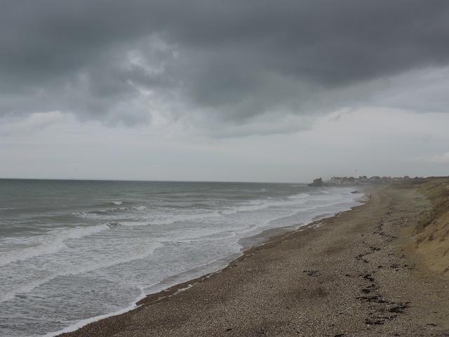 Balades canines en Nord (59)/Pas de Calais (62) - Boulogne-sur-Mer, Calais et Lille - Page 22 Dscn0616