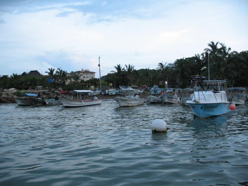 Fishing Puerto Vallarta area Img_5610