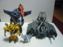Collection de Cybertron235 P1030010