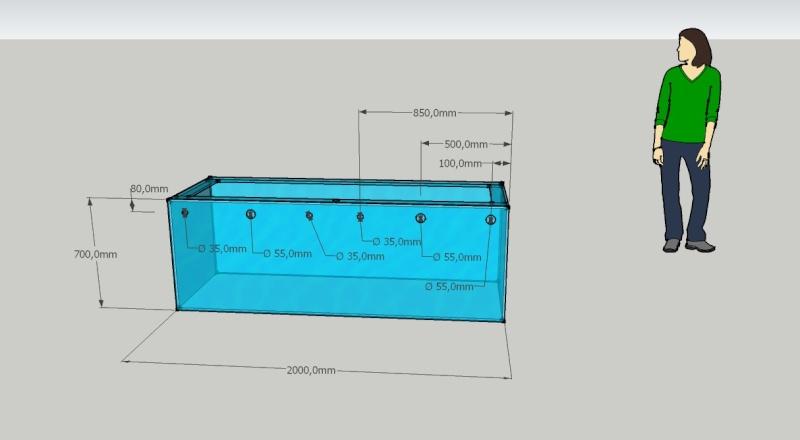 Projet 1000 litres en Jaubert déporté Aquari10