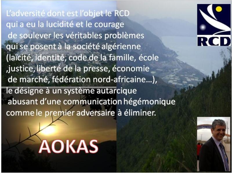 Aokas pour les nostalgiques 315