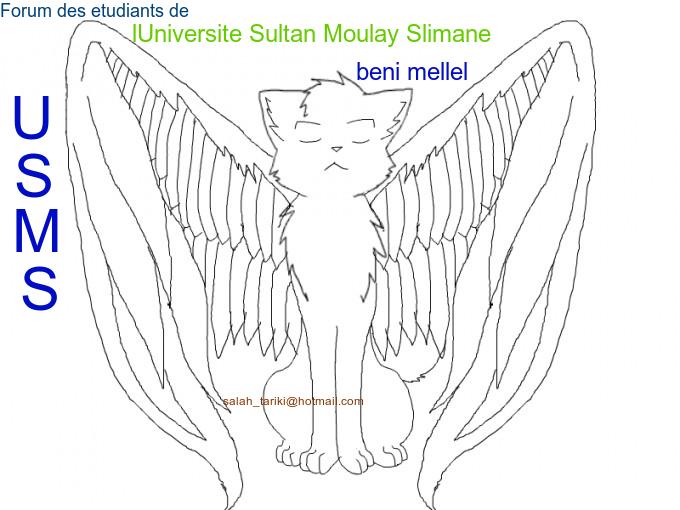 جامعة السلطان مولاي سليمان ـ بني ملال