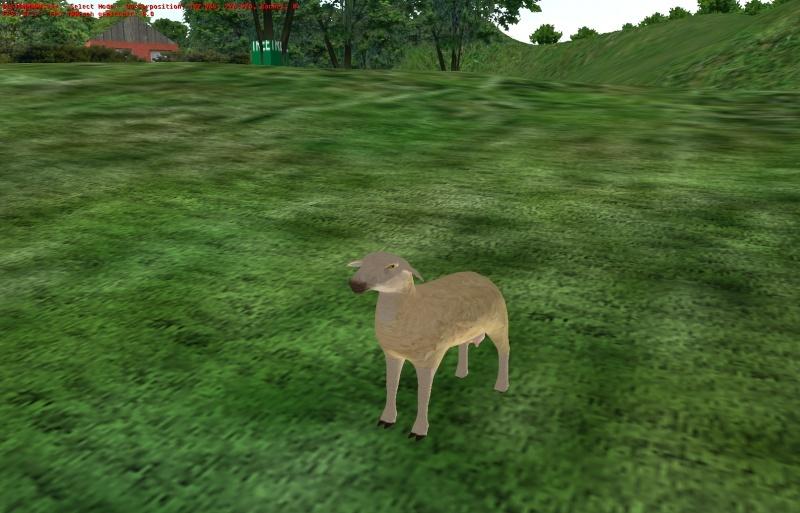 Lammas ja lehmäpaketti Omsi2010