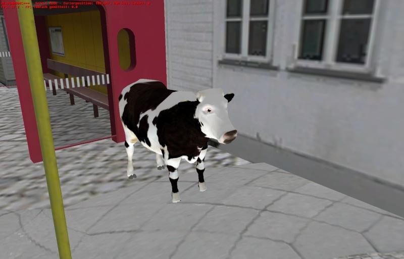 Lammas ja lehmäpaketti Omsi2011