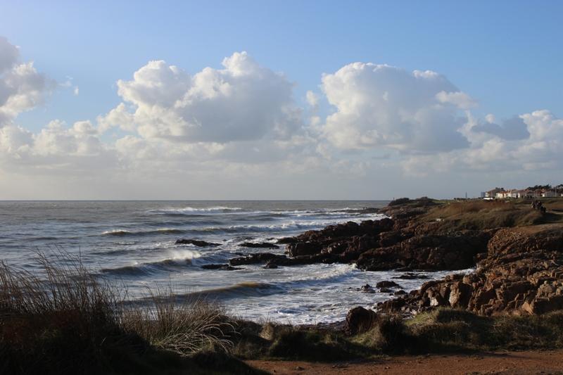 mensuelle de février en Vendée  Img_3510