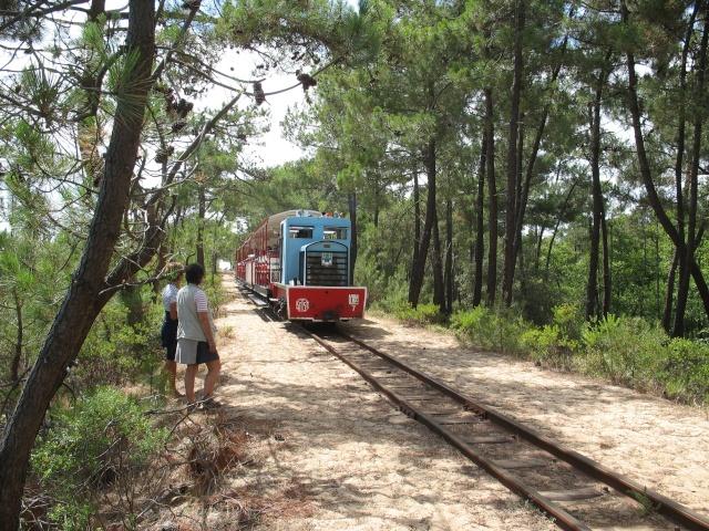 le petit train de St Trojan (ile d'Oléron ) Vacanc11