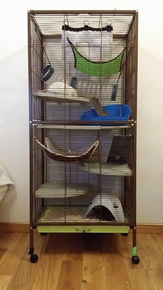 À vendre : Volière + Grande cage + 2 petites cages + cage de maternité 10314610