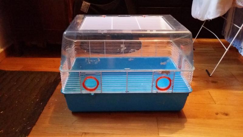 À vendre : Volière + Grande cage + 2 petites cages + cage de maternité 20141210