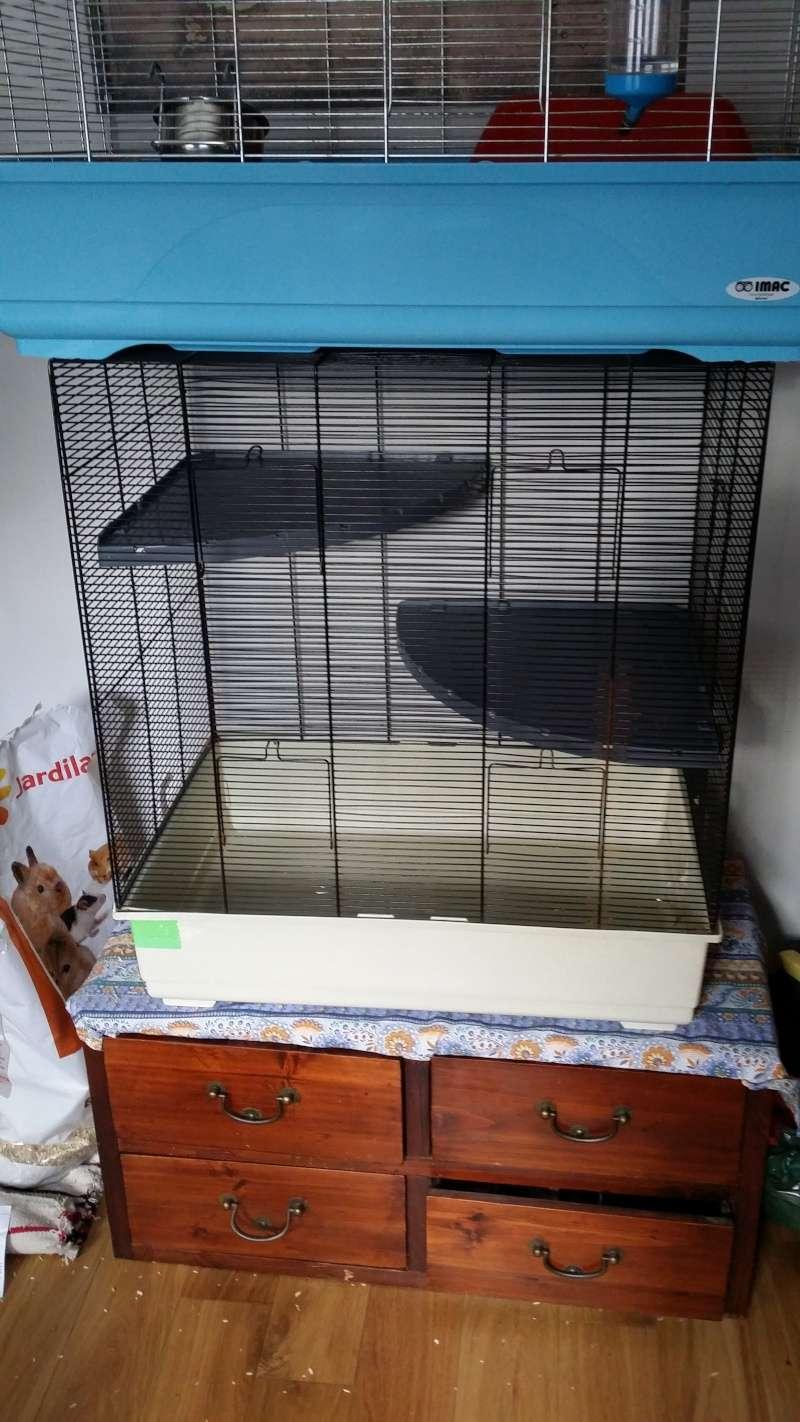 À vendre : Volière + Grande cage + 2 petites cages + cage de maternité 20150114