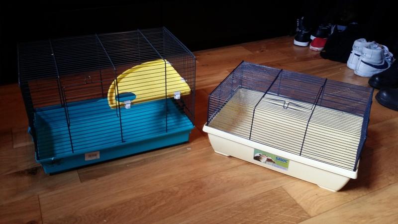 À vendre : Volière + Grande cage + 2 petites cages + cage de maternité 20150119