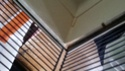 À vendre : Volière + Grande cage + 2 petites cages + cage de maternité 20150118