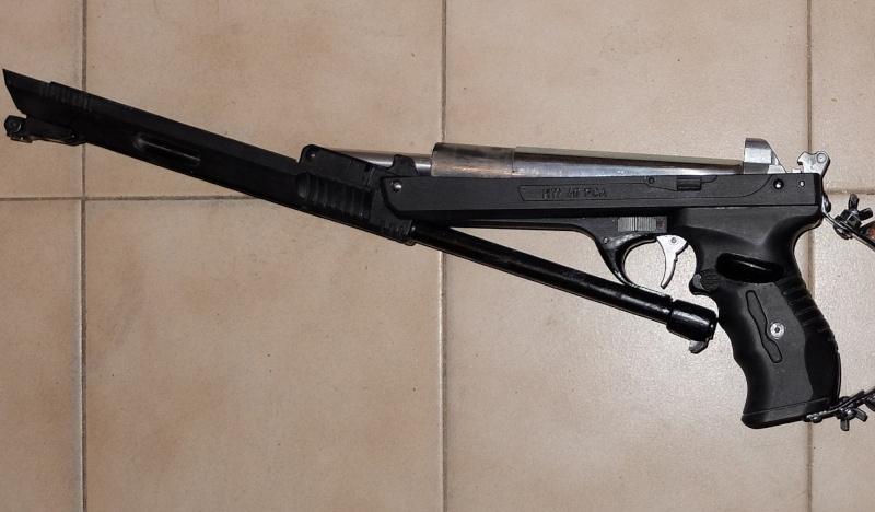 Pistolet carabine HW40 Dscf8517