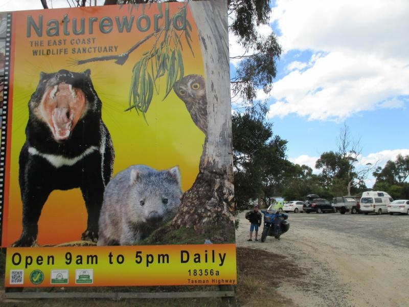 Tasmania 2014 - Page 3 Tassie14
