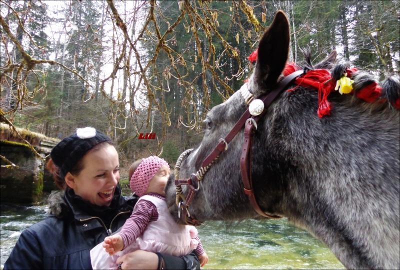 CONCOURS PHOTOS : La St Valentin équine Dsc04010