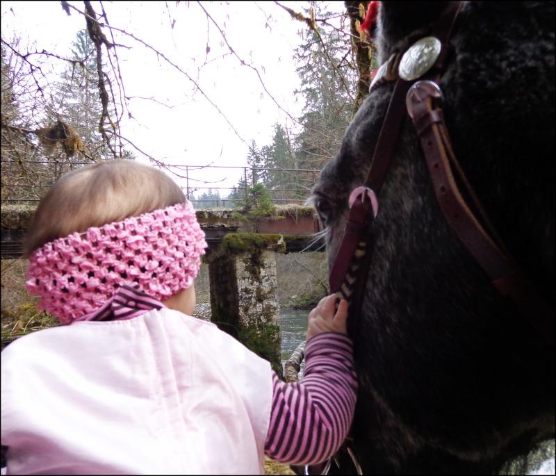CONCOURS PHOTOS : La St Valentin équine Dsc04011