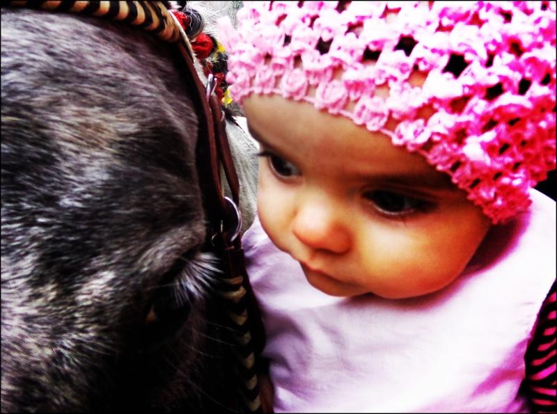 CONCOURS PHOTOS : La St Valentin équine Dsc04012