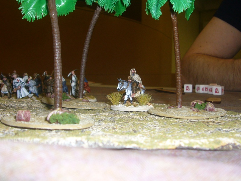 Milites VS Maures  - Page 3 P1410718