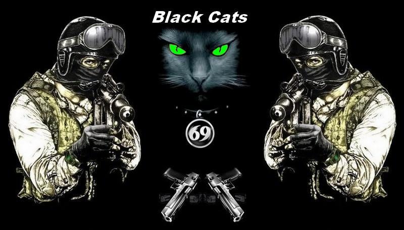 Black Cats 69