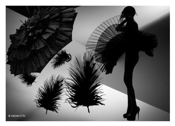 Galerie d'art de Isabelle DEMETTRE Nb_01010