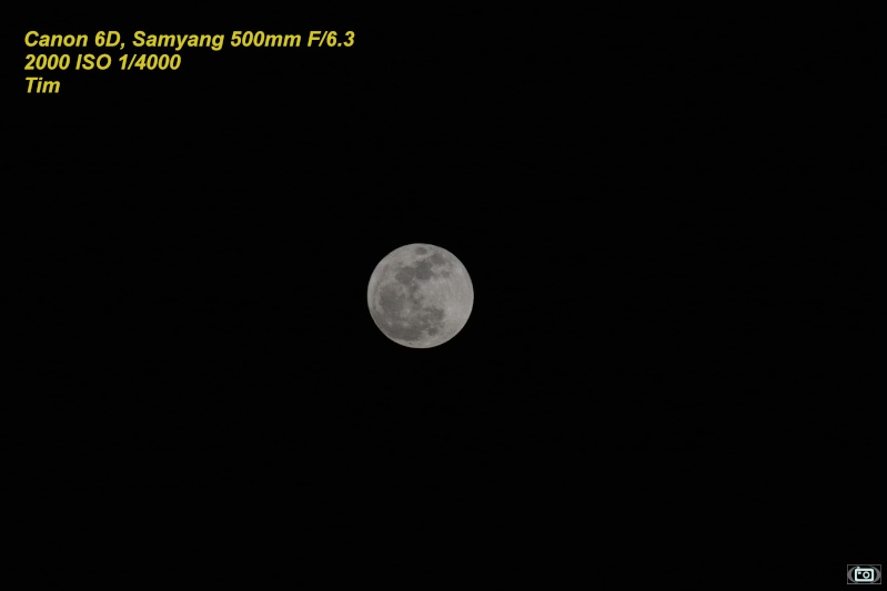 Premiers essais du Samyang 500mm F/6.3 sur la lune au 6D Img_3510