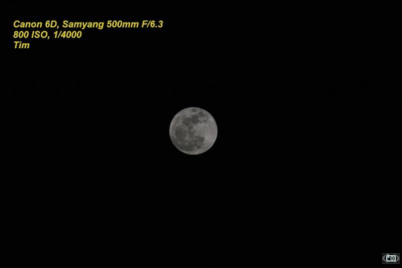 Premiers essais du Samyang 500mm F/6.3 sur la lune au 6D Img_3511