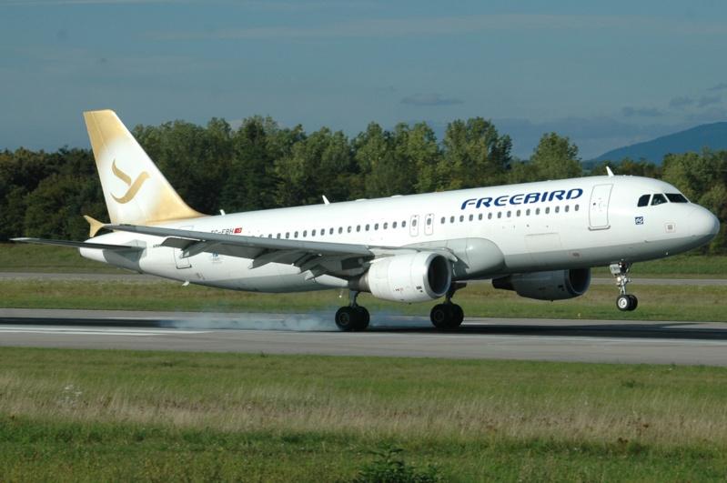 Mulhouse Euroairport  346010
