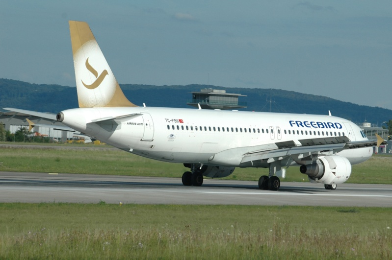 Mulhouse Euroairport  346610
