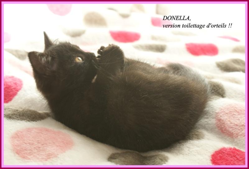 CHANEL (Donella) Dsc04615