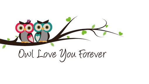 Animal Love Pics - Page 7 Owl-lo10
