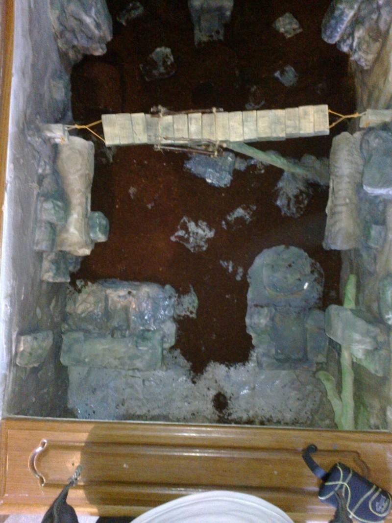 Projet terrarium gecko à crête - Page 2 20150110