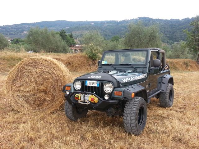 la jeep con la balla.... 2013-010