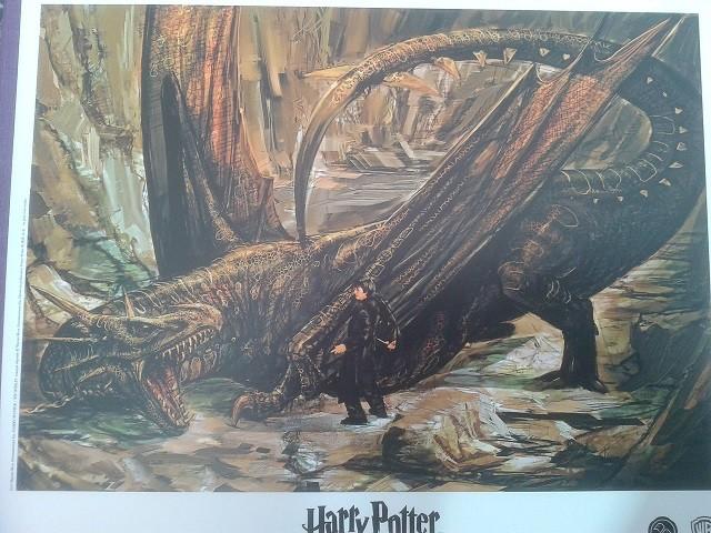 Harry Potter - Livres de collection et produits dérivés - Page 3 Lito10