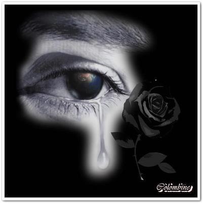 photos en noir et blanc - Page 16 48246910