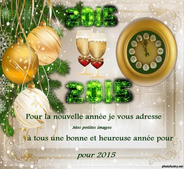 Mes meilleurs vœux 2015 10906110