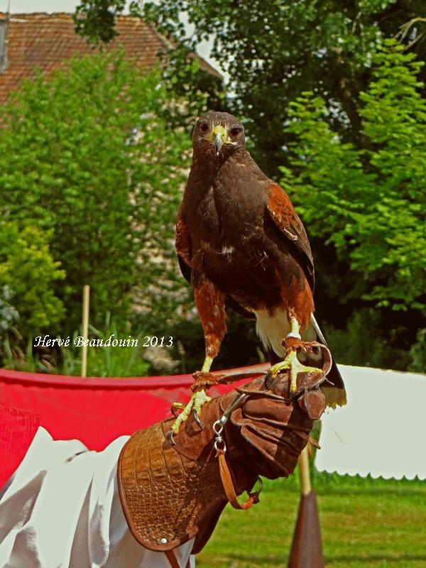 Fête médiévale, Les Aynans (Haute-Saône) Dsc06711