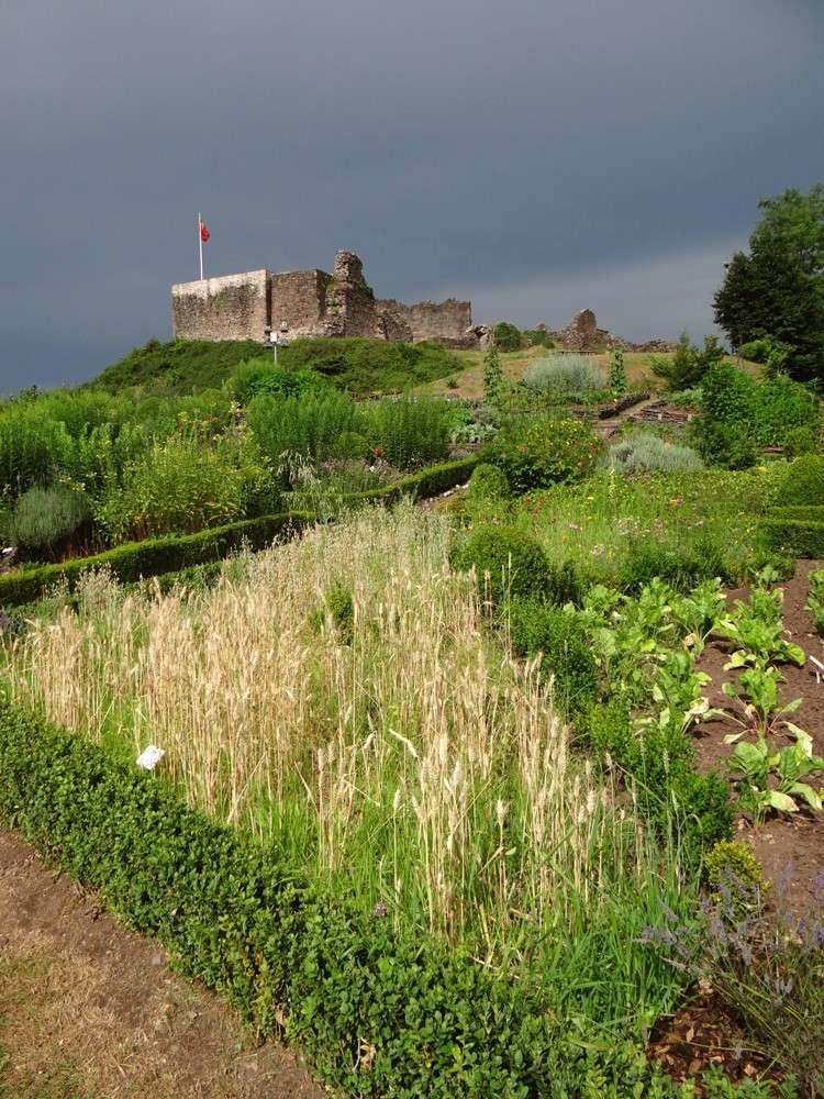 Le château d'Epinal hier Dsc07319