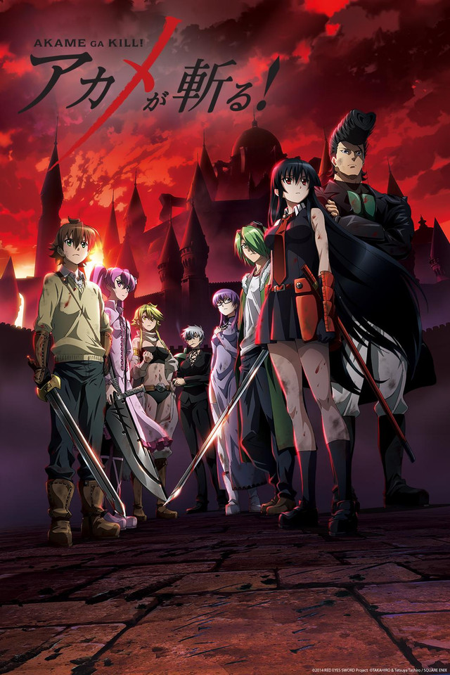 Critiques d'anime. Akame_10