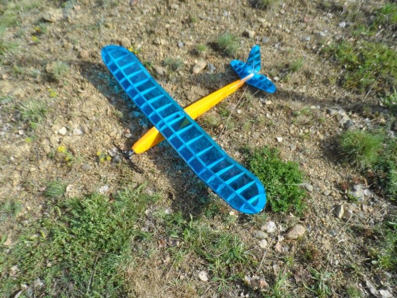 Avion perso Diddle 1  Sam_0212