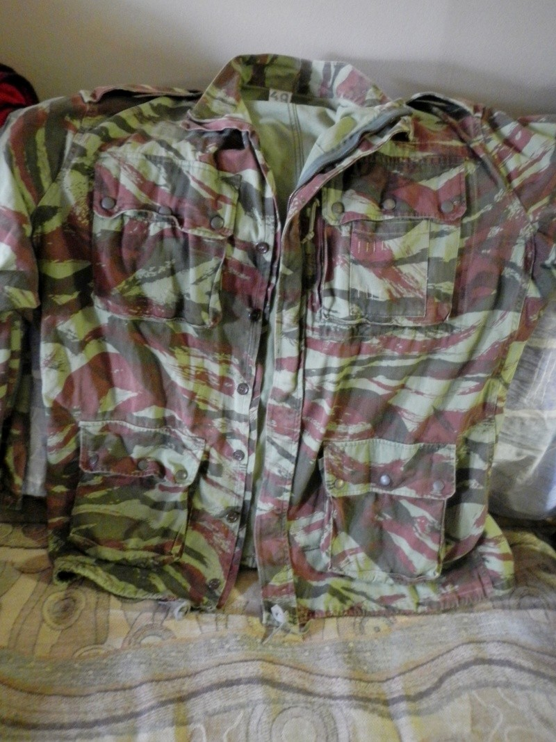 French lizard camo uniforms Dscn0113