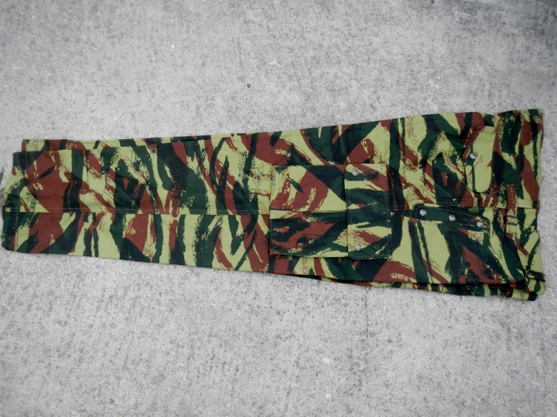 French lizard camo uniforms Dscn0517