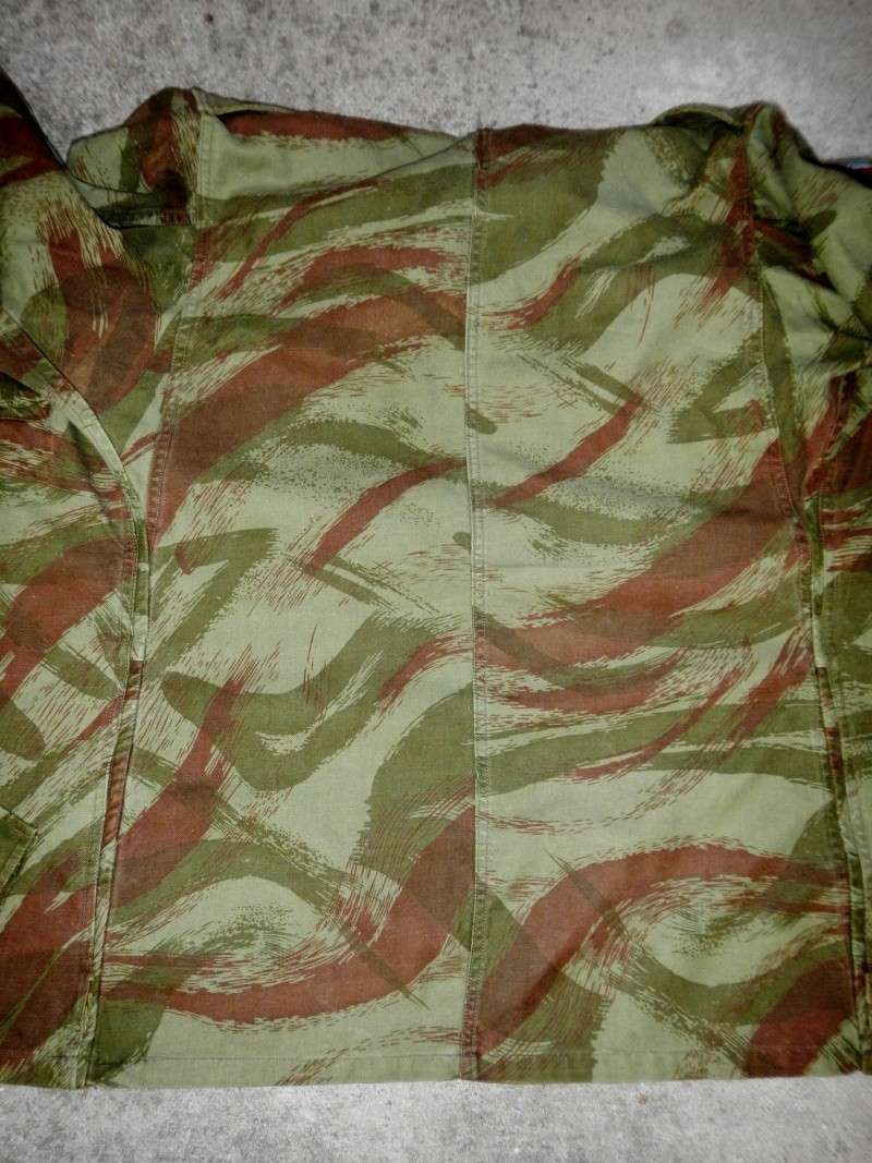 French lizard camo uniforms Dscn0545